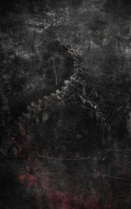 skullworm leidbild design artwork graphic print