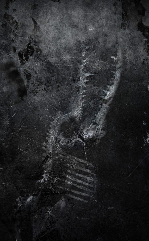 the lost crow canvas leidbild graphic